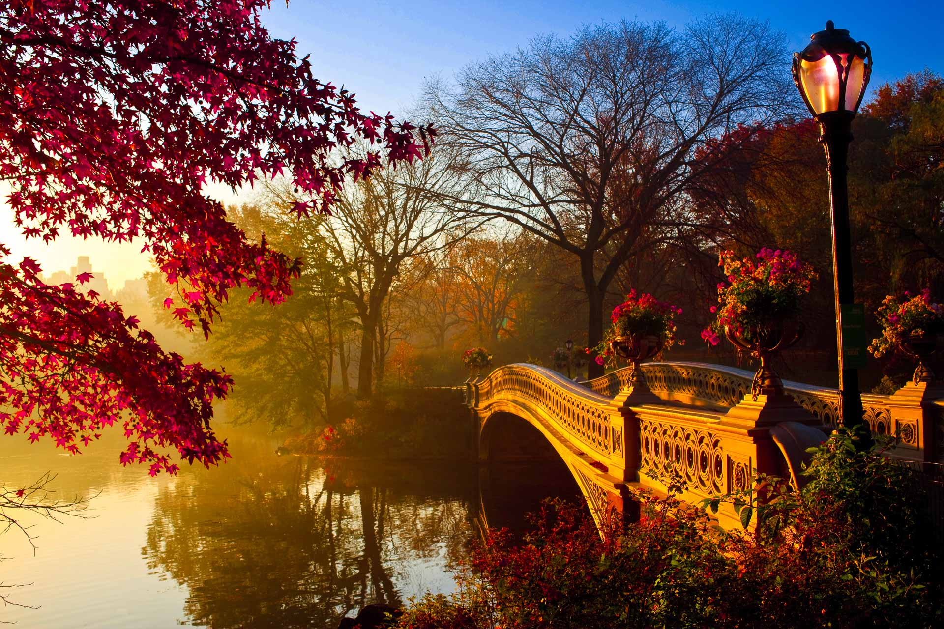 the Bow bridge in New York City's Central Park